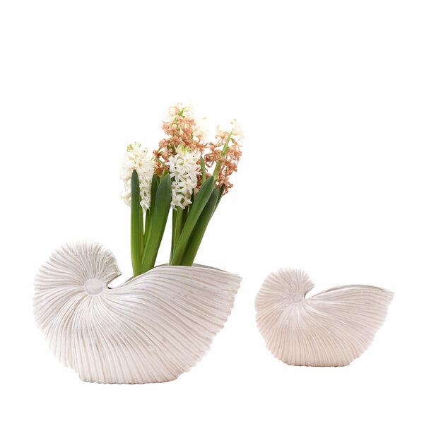 Conchiglia Vases - Set 2