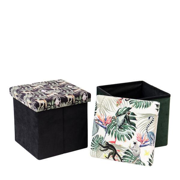 Box Tropical - 2 Mod Ass