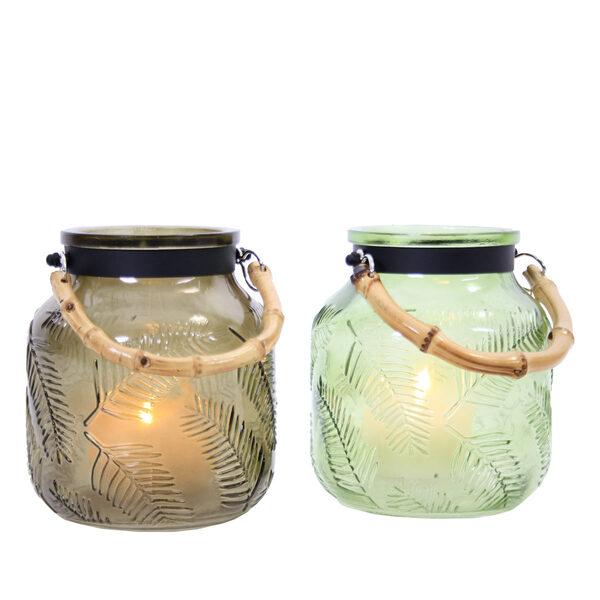 Lanterns Jungle