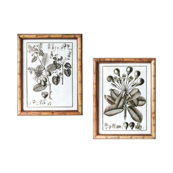 Quadro Botanica Tree - Set 2